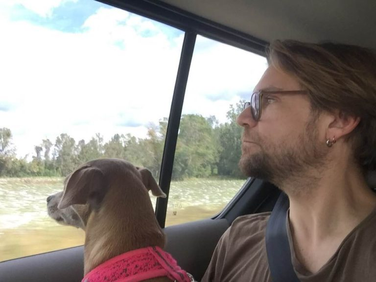 puppy and Roy Schneider stare out car window